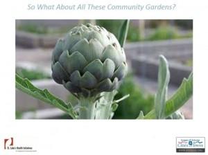 so-what-gardens-webinar