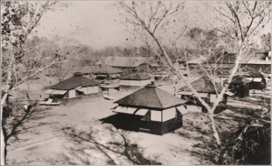 atwoood-tuberculosis-tents